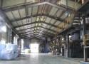 EFT Indoor Plant Photos 03